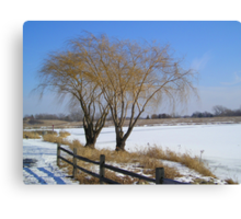 Two Trees in Winter Canvas Print