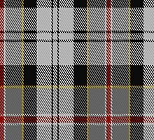 00704 Ailsa Craig Fashion Tartan Fabric Print Iphone Case by Detnecs2013