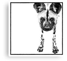The Jackal Canvas Print