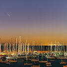 Comet PanSTARRS above Sandringham Yacht Club by Alex Cherney