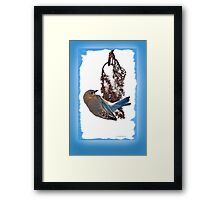 Blue Must be the Color Angels choose Framed Print