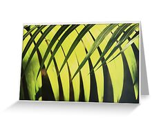 Green Shaddows Greeting Card