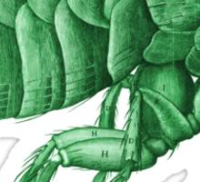Friendly Green Flea Tee Sticker