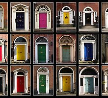 Georgian doors of Dublin by Giuseppe Ridinò