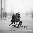 A foggy day #5 by smilyjay
