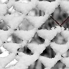 Snow Fence by rcrosss17