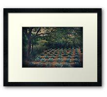Order Framed Print