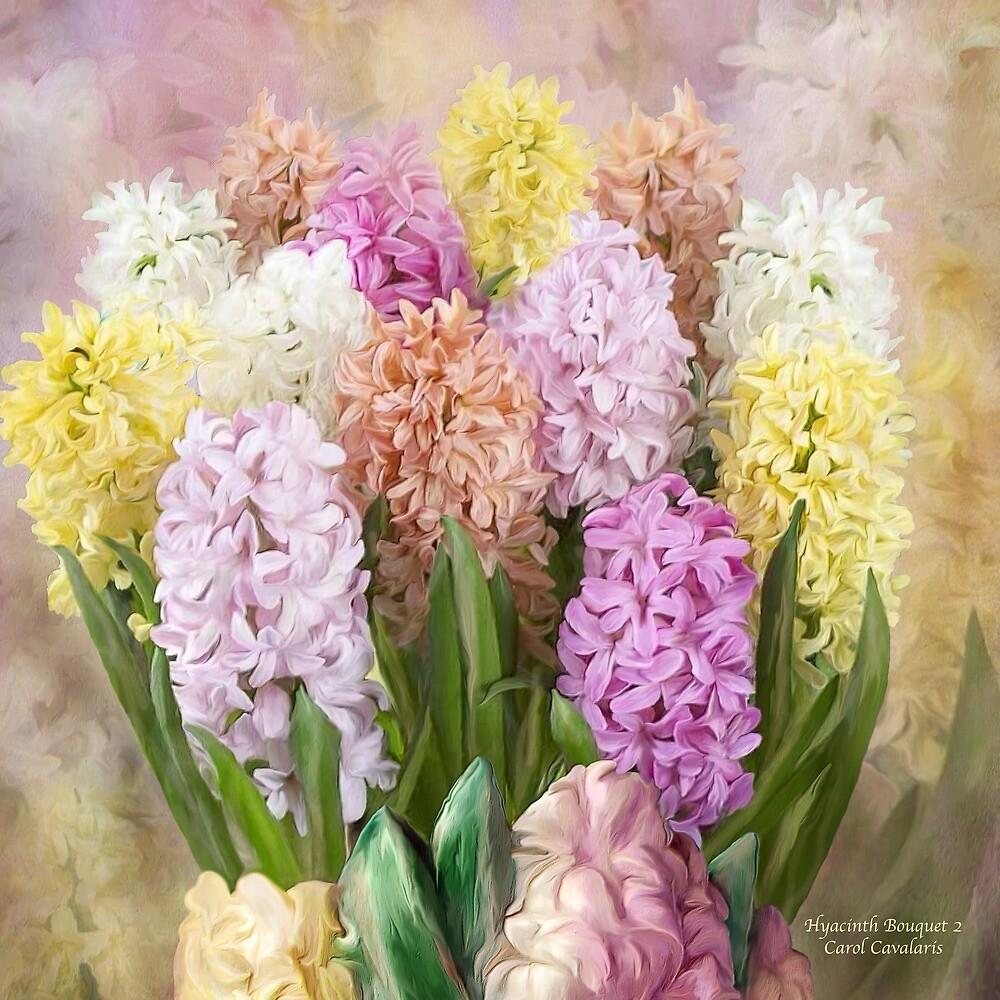 Hyacinth Bouquet 2 by Carol  Cavalaris