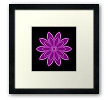 Purple Kaleidoscope 10 Framed Print