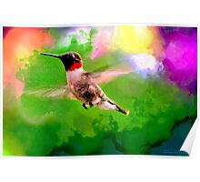 Hummingbird Visit Poster