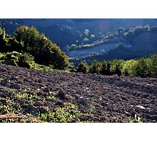 Celebration of the Earth on  the Umbrian Hills Photographic Print