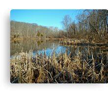 Perkiomen Creek Green Lane Recreational Area - Pennsylvania Canvas Print