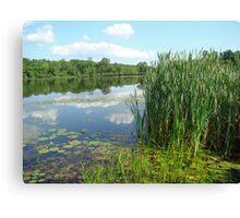 Green Lane Open Space Recreation Area - Pennsylvania Canvas Print