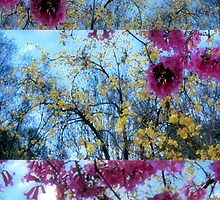 Moments out of Time: Map of an Imaginary World—Trees in Bloom by Ivana Redwine