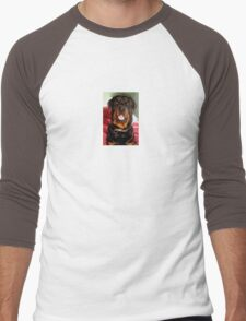 Portrait Of A Young Rottweiler Male Dog Men's Baseball ¾ T-Shirt