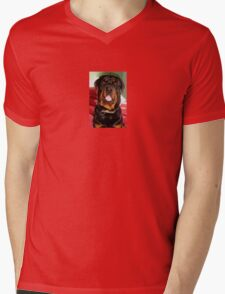 Portrait Of A Young Rottweiler Male Dog Mens V-Neck T-Shirt