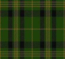 00718 Angle Green Fashion Tartan Fabric Print Iphone Case by Detnecs2013