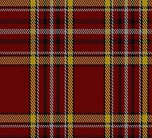 00721 Anthony Plaid Red Fashion Tartan Fabric Print Iphone Case by Detnecs2013