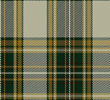 00724 Arbutus Fashion Tartan Fabric Print Iphone Case by Detnecs2013