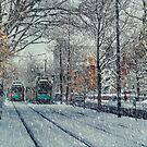 Never ending winter. Brookline, MA by LudaNayvelt