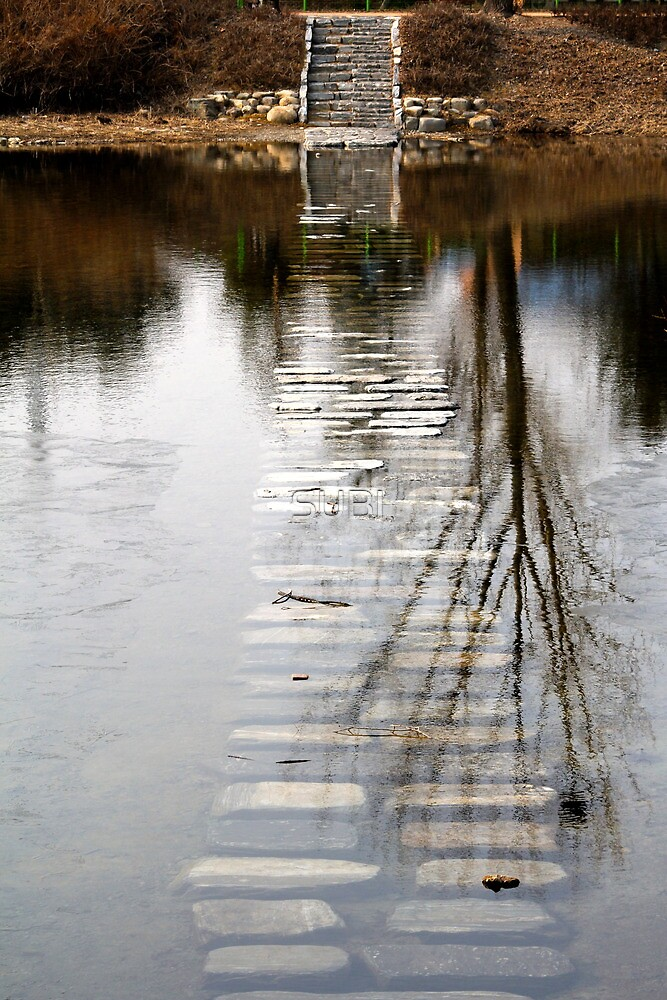 watery pathway by SUBI