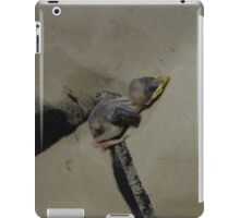 Nest Lack iPad Case/Skin