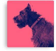 Pet Portraiture, Profile Canvas Print