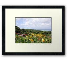 Jamaica Plantation Framed Print