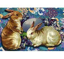 SPRING BUNNIES Photographic Print