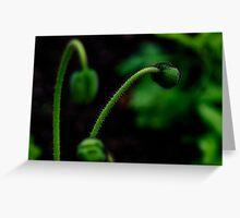 PS3-6-0523 Greeting Card