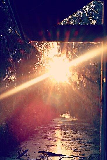 sunlight inspiration by megamonroe