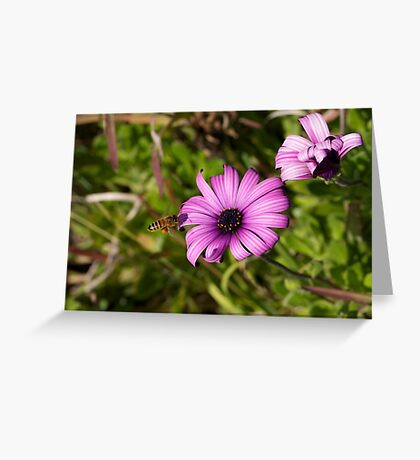 PS3-6-05424 Greeting Card