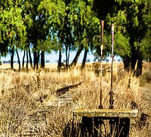 railway direction switch by outbacksnaps