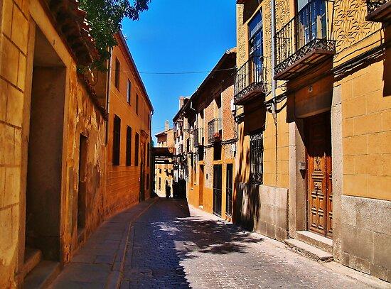 Old Segovia by Stephen Burke