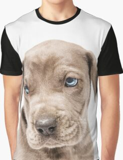 Great Dane Puppy  Graphic T-Shirt