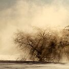 9.3.2013: Winter Morning Magic I by Petri Volanen