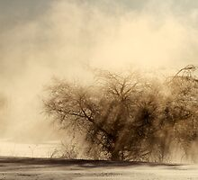 9.3.2013: Winter Morning Magic I by Petri Volanen