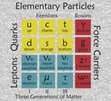 Elementary Particles Baby Tee