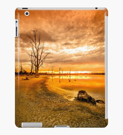 Tree stumps in dry lake - Kings Billabong iPad Case/Skin