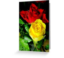 Yellow and red roses Greeting Card
