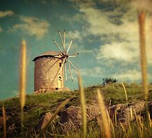 Windmill by Taylan Soyturk