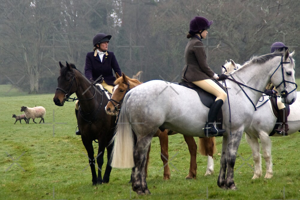 Devon Country by Country  Pursuits