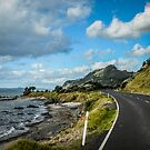 Coromandel Peninsula  NZ by 29Breizh33
