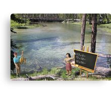 There was obvious confusion when Terry suggested to Sandy that she test the water. Canvas Print