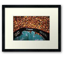 Canon love Framed Print