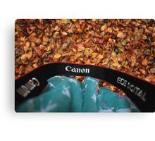 Canon love Canvas Print