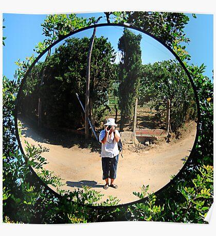 Mirror image. Poster