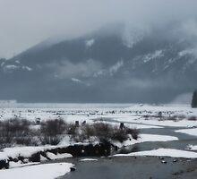 snow covered water~ by Brandi Burdick
