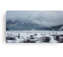snow covered pass~ Canvas Print