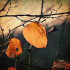 Last Leaves by Taylan Soyturk